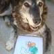 Concurso fotográfico – Julio del 2012 – Mascotas