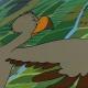 Dessin animé CyberDodo et les Aigles (1-21)