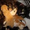 Et 5 chatons de plus !