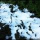 Première neige dans le Luberon