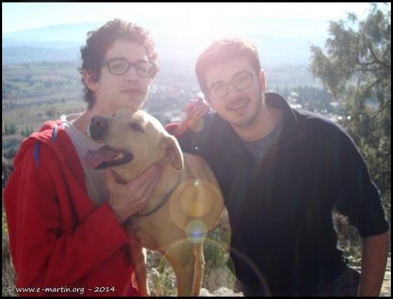 141223-Max-Mallo-Dog-2